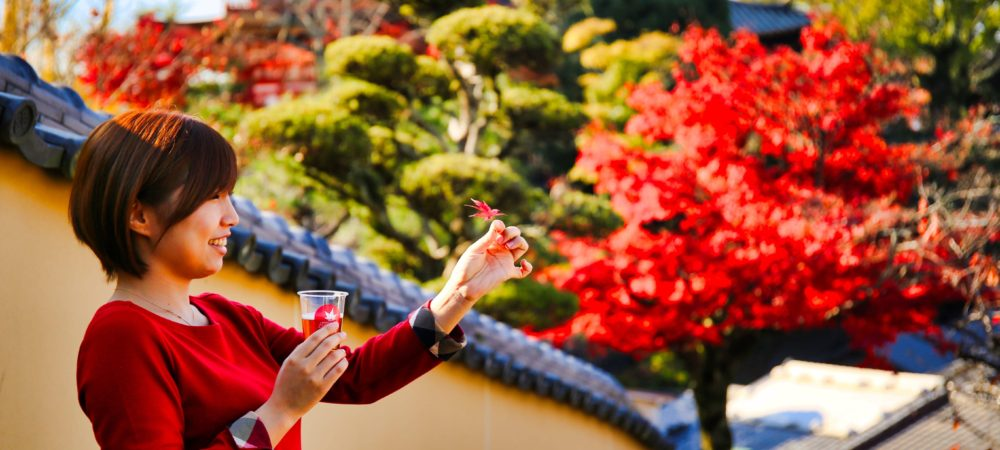 紅葉で乾杯!